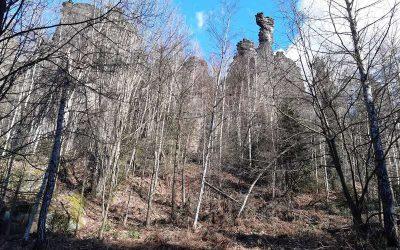 Bielatal im Elbsandsteingebirge